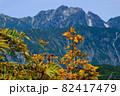 紅葉の北アルプス。絶景トレイル。日本の雄大な自然。百名山、剱岳。 82417479