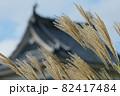 松本城とススキ。 82417484