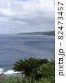 奄美大島の公園から見える海岸風景 大和大金久 82473457