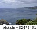 奄美大島の公園から見える海岸風景 大和大金久 82473461