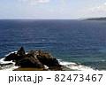 奄美大島の公園から見える海岸風景 大和大金久 82473467