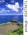 奄美大島の公園から見える海岸風景 大和大金久 82473471