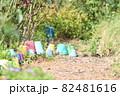 庭の小道の並んだ植木鉢 82481616
