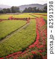 奈良県の絶景 一言主神社の彼岸花 82591398