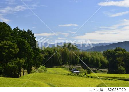 【奈良県御所市】田園風景 82653700