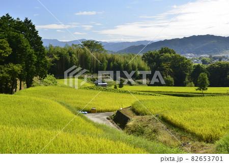 【奈良県御所市】田園風景 82653701