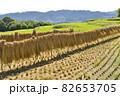 【奈良県御所市】田園風景 82653705