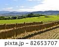【奈良県御所市】田園風景 82653707