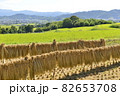 【奈良県御所市】田園風景 82653708