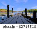 北八ヶ岳白駒池の湖畔に映える紅葉 82716518