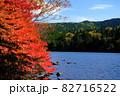 北八ヶ岳白駒池の湖畔に映える紅葉 82716522