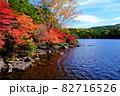 北八ヶ岳白駒池の湖畔に映える紅葉 82716526