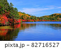 北八ヶ岳白駒池の湖畔に映える紅葉 82716527