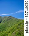 三瓶山 大平山からの景色(2021年5月) 82718030