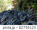 石鎚山(愛媛県)の鎖場 82730125