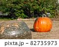 オレンジ色と緑色のジャンボかぼちゃ二つ 82735973