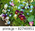 家庭の春の庭の風景 82740951