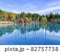 北海道美瑛 白金青い池 82757738