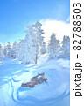雪 樹氷(長野県志賀高原) 82788603