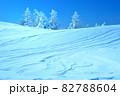 雪 樹氷(長野県志賀高原) 82788604
