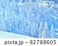 雪 樹氷(長野県志賀高原) 82788605