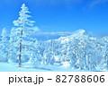 雪 樹氷(長野県志賀高原) 82788606