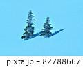 雪 樹氷(長野県志賀高原) 82788667