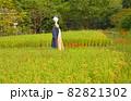 彼岸花咲く稲田に立つユニークな案山子 82821302