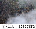 【北海道上富良野町】朝霧とダケカンバの黄葉が美しい十勝岳の景色 10月 82827852