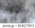 【北海道上富良野町】朝霧とダケカンバの黄葉が美しい十勝岳の風景 10月 10月 82827853