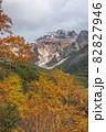 【北海道上富良野町】紅葉と初冠雪の十勝岳 10月 82827946