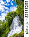 長野県茅野市の豪快に流れる乙女滝 82835255
