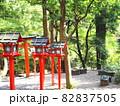 赤橙 『和風イメージ』(京都) 82837505