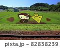縄文小ヶ田駅の田んぼアート 82838239