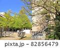 東京都立大学 八王子市 82856479