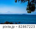 神奈川の湘南から見れる富士山 82867223