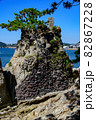 湘南の水平線と松の木と水平線 82867228