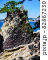 松の木と岩場と湘南の森戸大明神にて 82867230