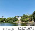 恩賜池と岡崎市美術博物館 (岡崎市中央総合公園/愛知県岡崎市) 82871971