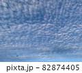 青空いっぱいに広がるいわし雲のような雲/The clouds in the sky 82874405