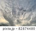 夕方の空(夕焼け空)にいわし雲のような雲と流れる雲/The clouds in the sky 82874480