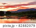 瓢湖の夏 82882079