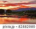 瓢湖の夏 82882080