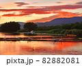 瓢湖の夏 82882081
