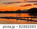 瓢湖の夏 82882083