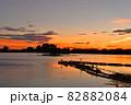 瓢湖の夏 82882084