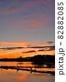 瓢湖の夏 82882085