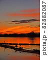 瓢湖の夏 82882087