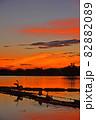 瓢湖の夏 82882089