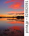 瓢湖の夏 82882091